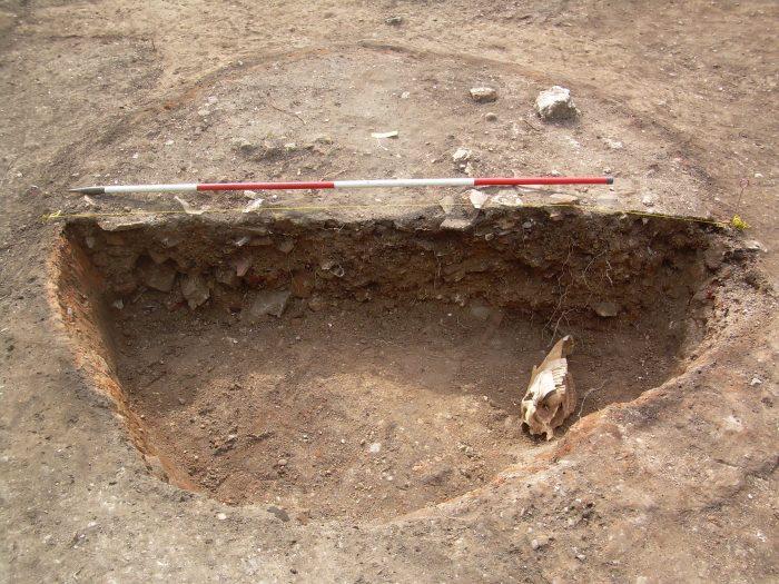 Horse Skull deposited within pit